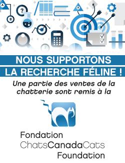 banner-CCC-Fondation-250x325-FR